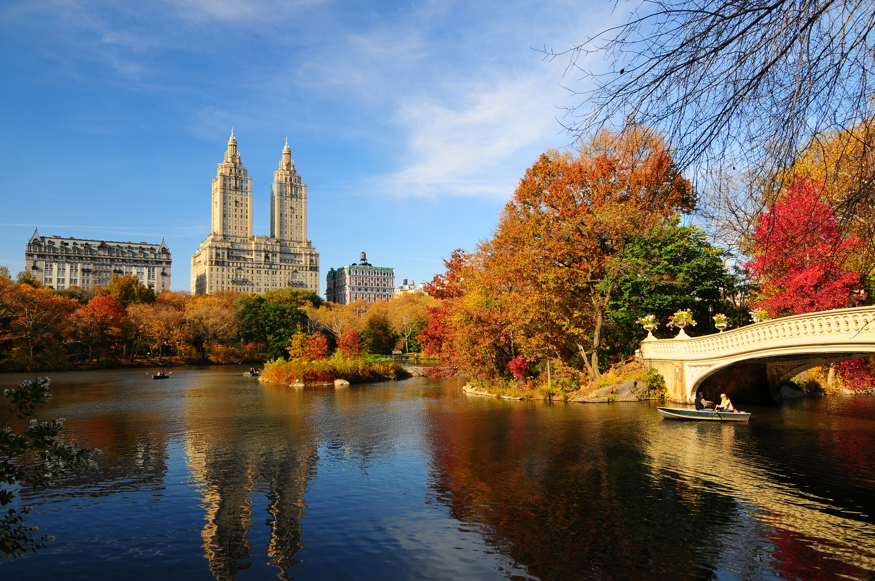 an image of fall foliage in central park nyc
