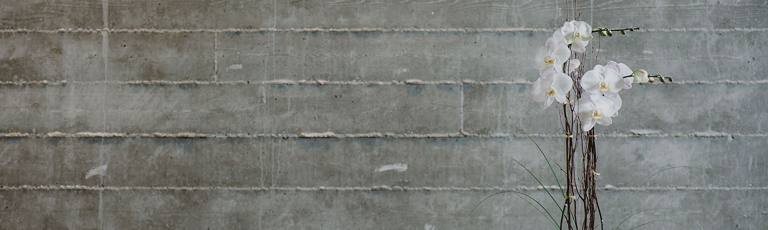 Close up of grey brick textured wall with white orchid in front of it