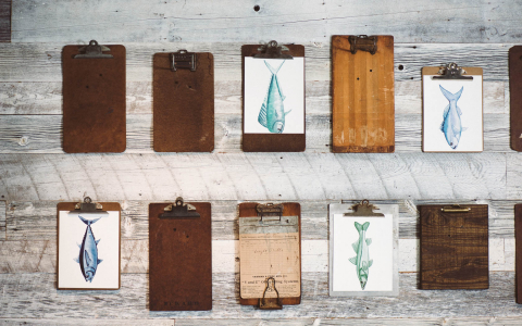 Wooden clipboards with images of fish