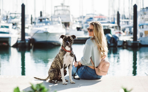girl and dog sitting on a dock in the marina