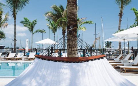 View from a hammock of pool and marina in background