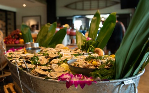 platter of oysters and ceviche with decorative leaves and orchids