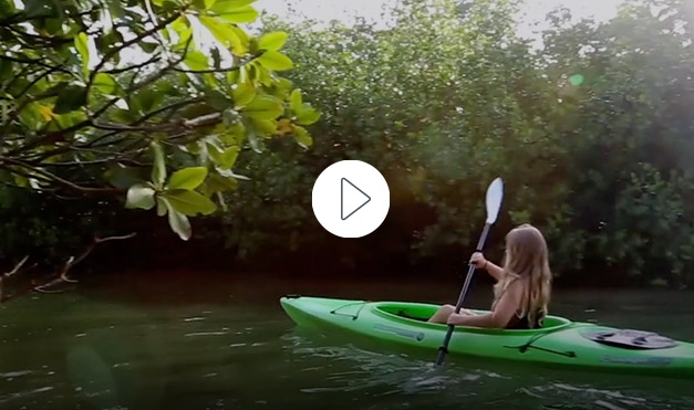 Girl kayaking in mangroves