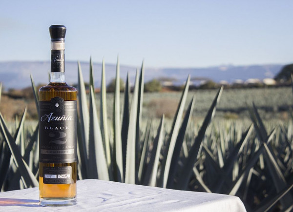 Botte of tequila on table outside in front of agave plants