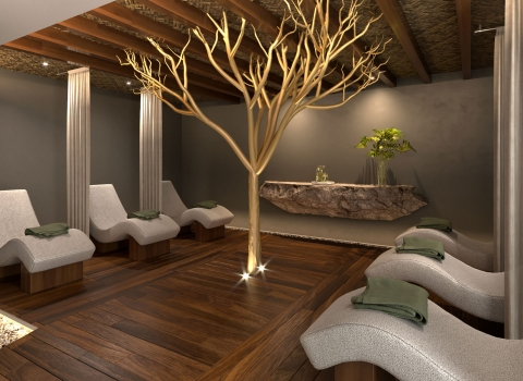 Spa room with 5 grey lounge beds and a tree with no leafs in the middle