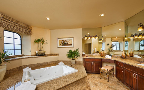 large bathroom with jacuzzi tub