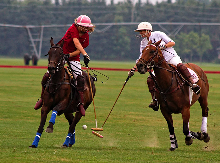 men on horses playing polo
