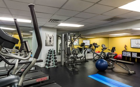 Fitness Center - Exercise Equipment