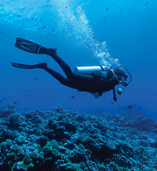 Scuba diver swimming in Bimini