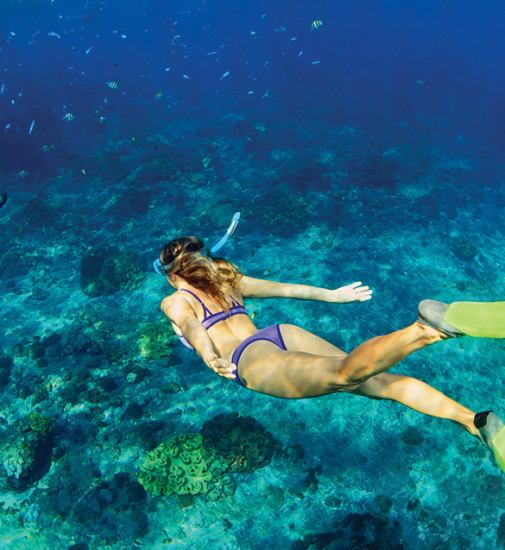 A woman wearing snorkeling gear is diving under water