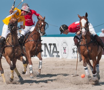Polo on the Beach