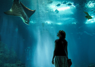 woman at aquarium