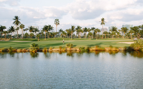 lake by golf course and palm trees