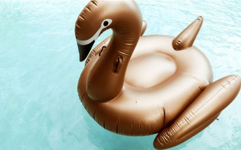 Duck floatie