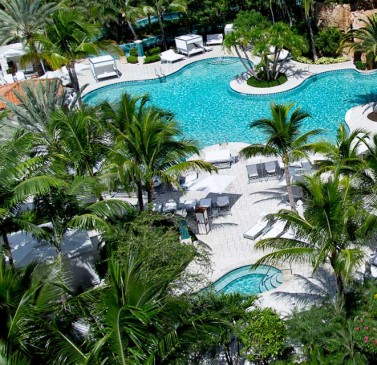 Aerial view of pool & jacuzzi surrounded by palm trees
