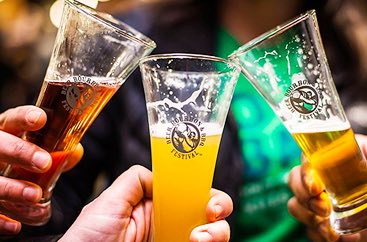 Close up of three people doing a cheers with beer glasses