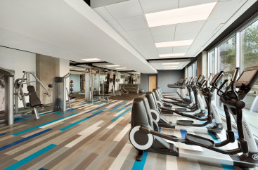 A work out room with lots of equipment including ellipticals, treadmills, and weight machines