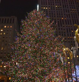 christmas tree at rockefeller plaza