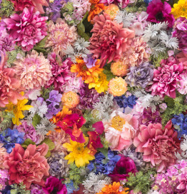 wall of multicolored flowers