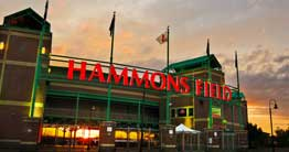 hammons-field