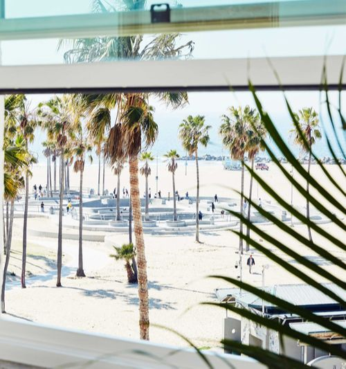 window with beach and palm trees