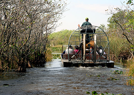 Airboat Ride on narrow river with foliage