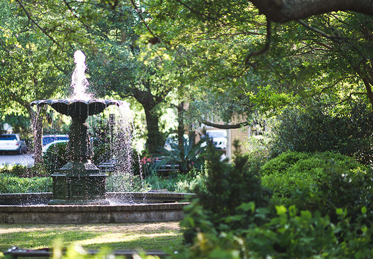 Water fountain surrounded by greenery