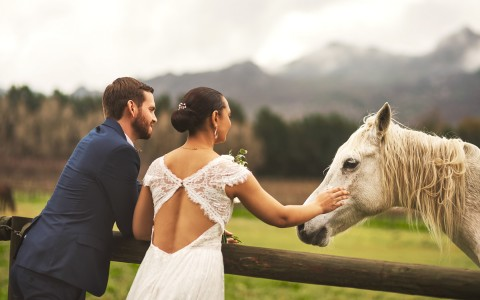 bride and groom petting a horse