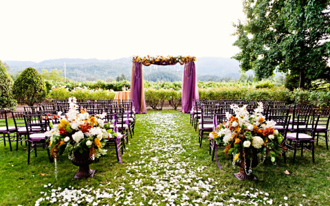 wedding ceremony set up outside overlooking vineyards with an arch decorated with purple fabric and flowers and a petal covered aisle