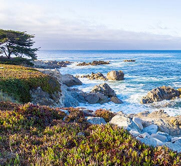 woodside mome destinations monterey