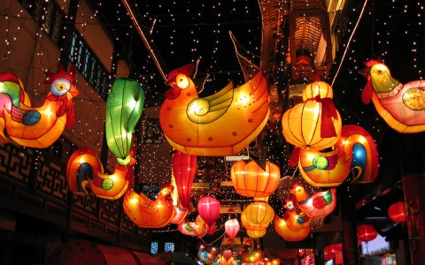 chinese lanterns of animals