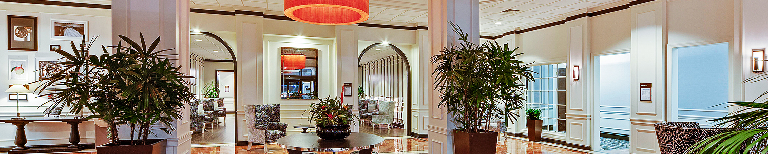 hotel lobby area with various seating and large plants for decoration