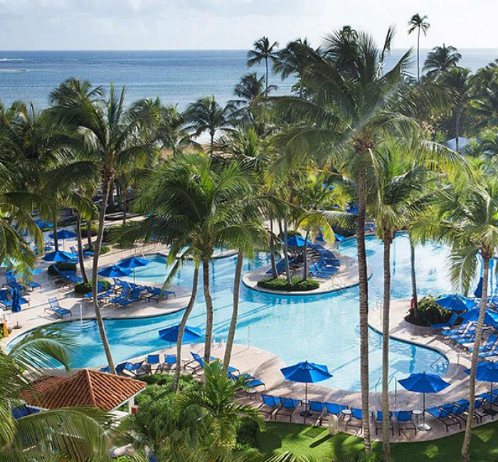 wyndham grand rio mar pool area with palm trees and ocean view