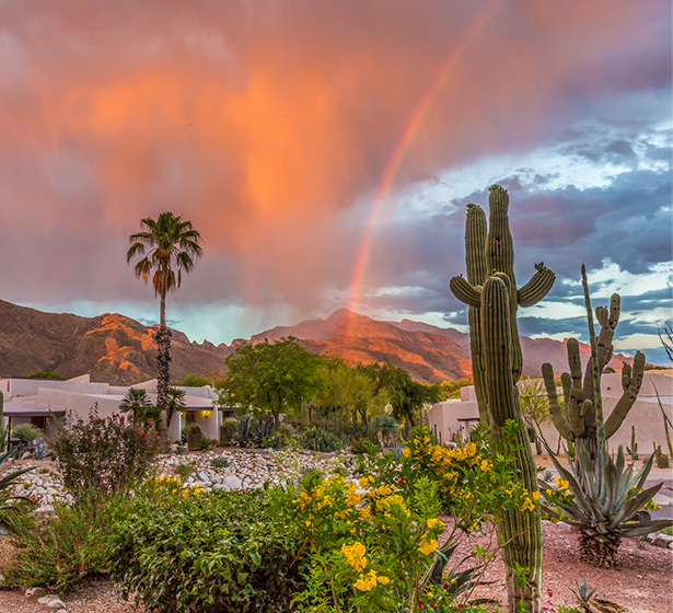 exterior shot of the property with cactuses and a rainbow