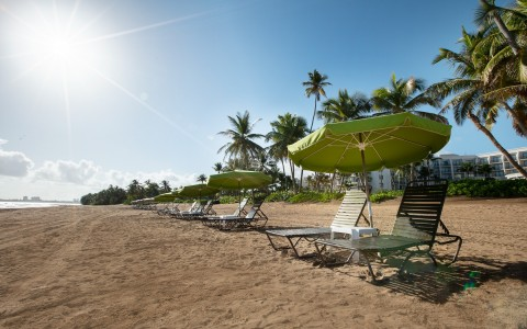beach with parasoles and lounge chairs