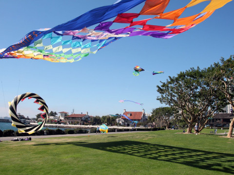 Large park green with colorful kites being flown