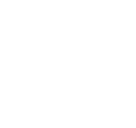 Travelers Choice Award TripAdvisor
