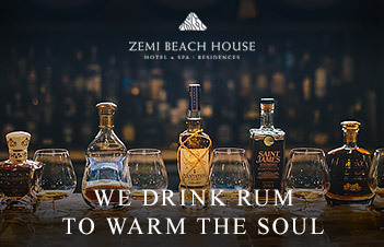 zemibeach warm the soul newsletter