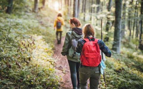 2 women hiking on trail - gallery image