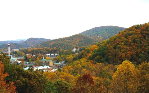 View of hills during autumn  - gallery image