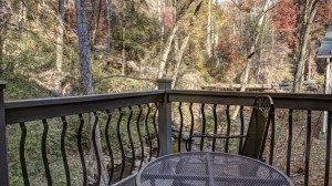 Outdoor deck overlooking forest