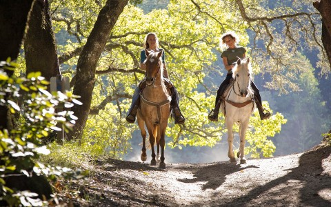 A mother and daughter riding horses in the forest