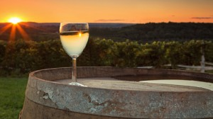 Glass of white wine perched on a wine barrel in a vineyard