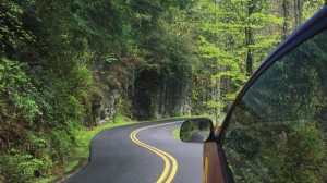Car driving along a winding forest road
