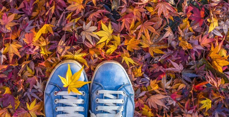 looking down at sneakers surrounded by fall leaves on the ground